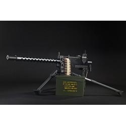 RWA M1919 AEG -