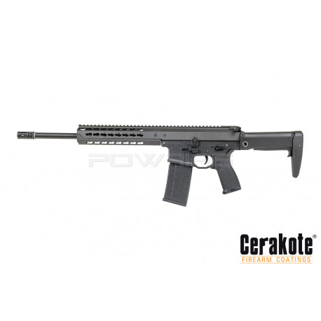 Dytac Warlord DMR AEG (Type A)