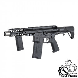 P6 Workshop DYTAC SLR-B15 PDW Custom AEG -