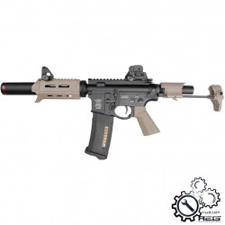 P6 Workshop B4 PDW ICFU Titan custom AEG (Dark Earth) -