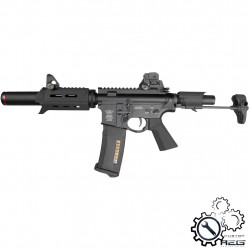 P6 Workshop B4 PDW ICFU Titan custom AEG (Black) -