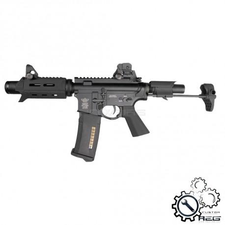P6 Workshop B4 PDW ICFU Titan custom AEG (short version, Black) -
