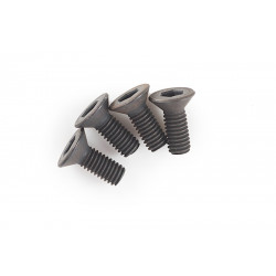 Systema Grip End Screw ( Set of 4 ) for PTW -